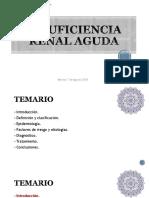 Dra. Tiare Quiroz Opazo Insuficiencia Renal Aguda Y Cronica 2018