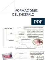 3.MALFORMACIONES DEL ENCÉFALO.pptx