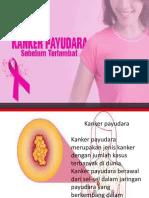 SADARI PPT.pptx