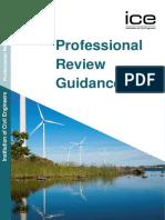 professional-review-guidance-re.pdf.pdf