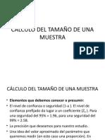 CALCULO DEL TAMAÑO DE UNA MUESTRA