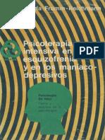 249077226-Reichmann-Psicoterapia-EQZ.pdf