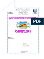 Informe. Capitulo i. Prof. Nestor