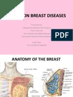 COMMON BREAST DISEASES (1) (1).pptx