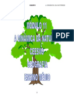 Geografia - CEESVO - Apostila - Módulo 11