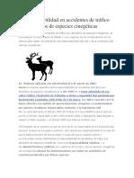 La responsabilidad en accidentes de Transito por atropellos de  animales menores.pdf