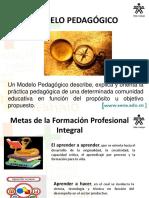 pedagogicosena