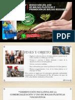 Presentacion Ley de Bolsas Plasticas PDF