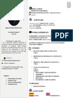 CV english HUGO ALCALA.docx