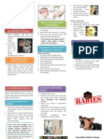 Leaflet Rabies.docx