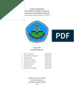 LAPORAN PRAKTIKUM PFM.docx