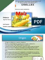 diapositiva maiz11
