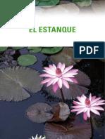 plantas de agua fria