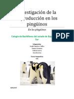 Investigación de la reproducción en los pingüinos.docx
