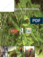 control_biologico_mosca_blanca.pdf