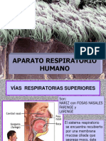 APARATO_RESPIRATORIO_HUMANO2018.ppt