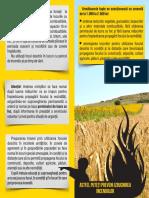 Flyer Vegetatie 2014