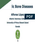 2 Bone Metabolic