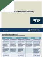 IIA maturity model.pdf