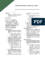 PRACTICA N° 2 EL MECHERO DE BUNSEN Y ESTUDIO DE LA LLAMA