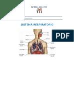 CN Sistema Respiratorio