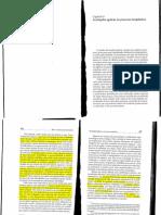 As funções egóicas no processo terapêutico - Hector Fiorini.pdf