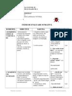 Evaluare-sumativa - GRUPA MARE - model.doc