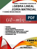 Codex 2019 Algebra Lineal Tomo i 1