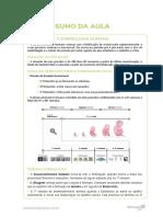 Embriologia Ensino Superior Resumo.pdf