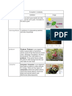 viridiana garcia - ecosystems  vocabulary
