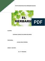 HERBARIO.docx