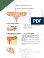 Estudo Dirigido Aparelho Reprodutor Feminino