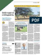El Comercio (Lima-Peru) Lun 18 Feb 2019 (Pag A29) Pag Taurina