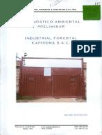 1. DAP.pdf