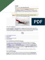 Avión comercial.docx
