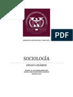 Ensayo sociología