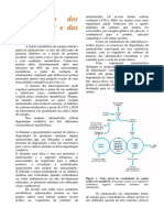 BioqIIOXIDAÇAODOSAMINOACIDOSUREIA