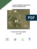 Diagnóstico de Salud Ambiental Humana en La Provincia de Espinar-Cusco_0