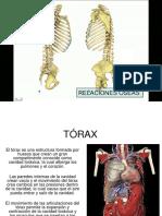 Torax Oseo y Mecanica Resíratoria