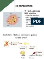 2. Diabetes - Fisiopatologia diabetes.ppt