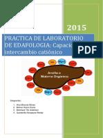 318686219-Capacidad-de-Intercambio-Cationico-Edafologia.docx