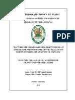 TESIS FACTORES DEL EMBARAZO EN ADOLESCENTES- T.S 2015.pdf