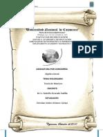 teoriamatrices_CHRISTIAN.docx