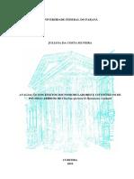 cp128619.pdf