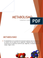 Metabolismo PPT