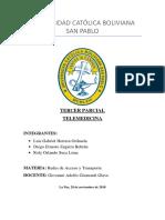 Telemedicina - FInal.docx