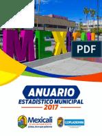 Anuario Estadistico Municipal 2017.pdf