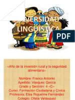 diversidadlingistica-131006205127-phpapp02