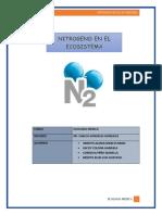 EFECTOS-AMBIENTALES-DEL-NITROGENO-modificado.docx
