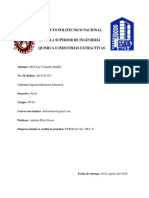 REPORTE DE PRACTICA PROFESIONAL.docx